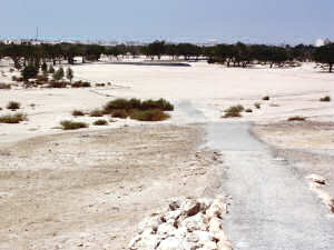 Awali Golf Club, Bahrain